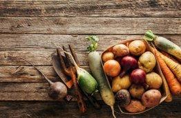 warzywa-korzeniowe